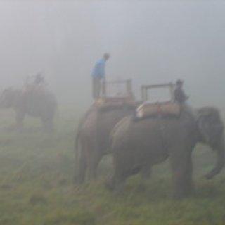 nepal2010-19