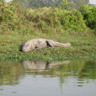 nepal2010-20
