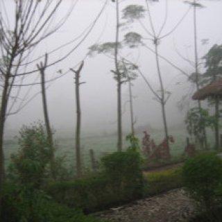 nepal2010-24