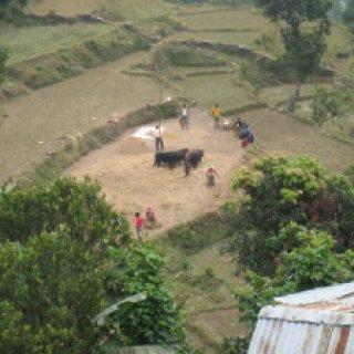 nepal2010-31