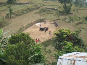 nepal2010-31.jpg