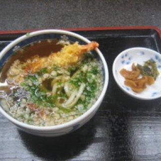 yakushima2016-15