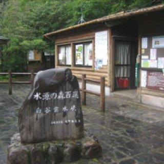 yakushima2016-19
