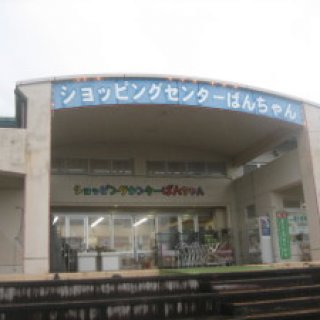 yakushima2016-28