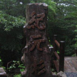 yakushima2016-36.
