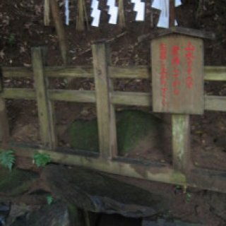 2008.kashima-shrine-03