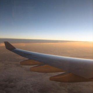 nz-airplane