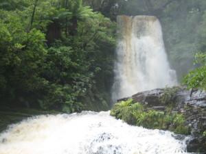McLean-Falls-Walk-04.JPG