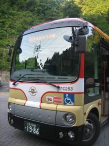 mitake-hotsuprings-tsurutsuru-04.JPG