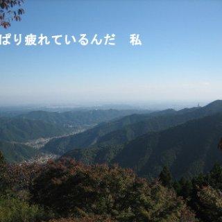 006-blog