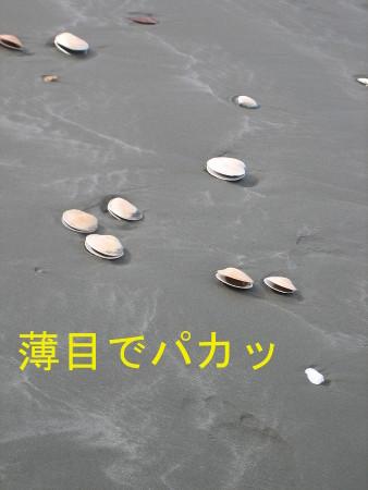 008-blog.jpg