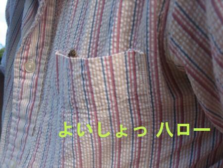 010-blog.jpg