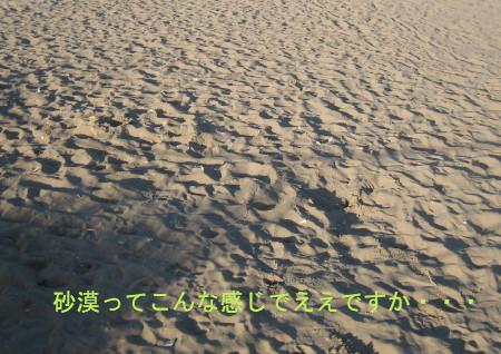 011-blog.jpg