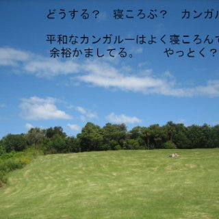017-blog