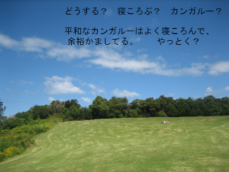 017-blog.JPG