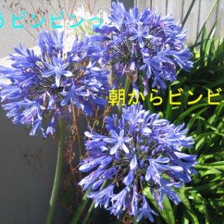 022blog