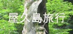 yakushima2016top.JPG