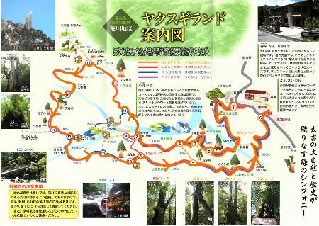 yakusugiland01.jpg