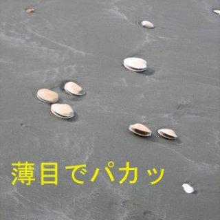 008-blog