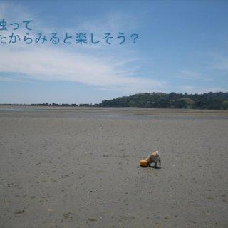 015-blog